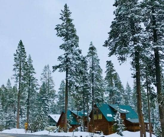Your Ultimate North Lake Tahoe Travel Guide