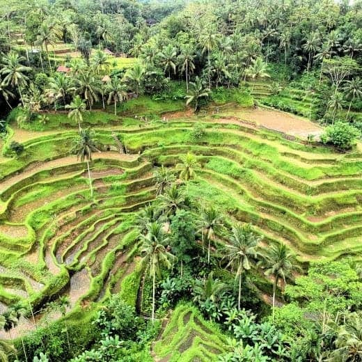 Bali Tourist Attractions: Avoid the Crowds at These Places in Bali