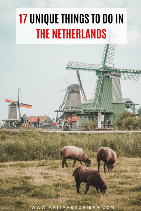 Unique Things to do in The Netherlands